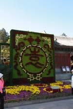Peking/130757/vor-dem-sommerpalast-in-peking-11102010 Vor dem Sommerpalast in Peking 11.10.2010